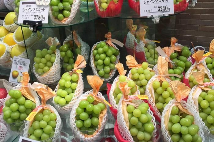 (日本購物推薦) 如珍寶般的シャインマスカット麝香葡萄 最高檔果物精品不容錯過 還有許多有益元素