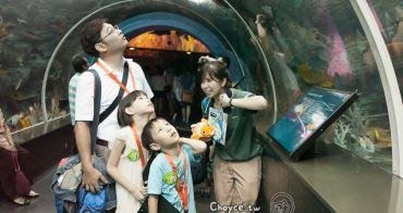 (新加坡觀光) S.E.A.海洋館 全世界最大的水族世界之一:海洋生物園 奇妙海底探索之旅,出發