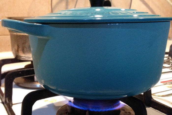 (Choyce廚房) 好吃米飯這樣煮,保證小孩惦惦吃三碗飯(LC琺琅鑄鐵鍋輕鬆煮飯)