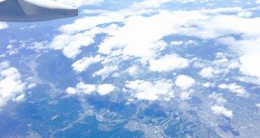 (親子旅遊超好玩) 飛機嬰兒吊床 使用規則與注意項目