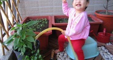 小喬愛當小園丁