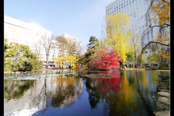 (日本北海道) 再見了 秋天