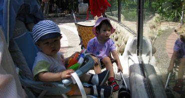 子喬子鈞的動物園探險時間