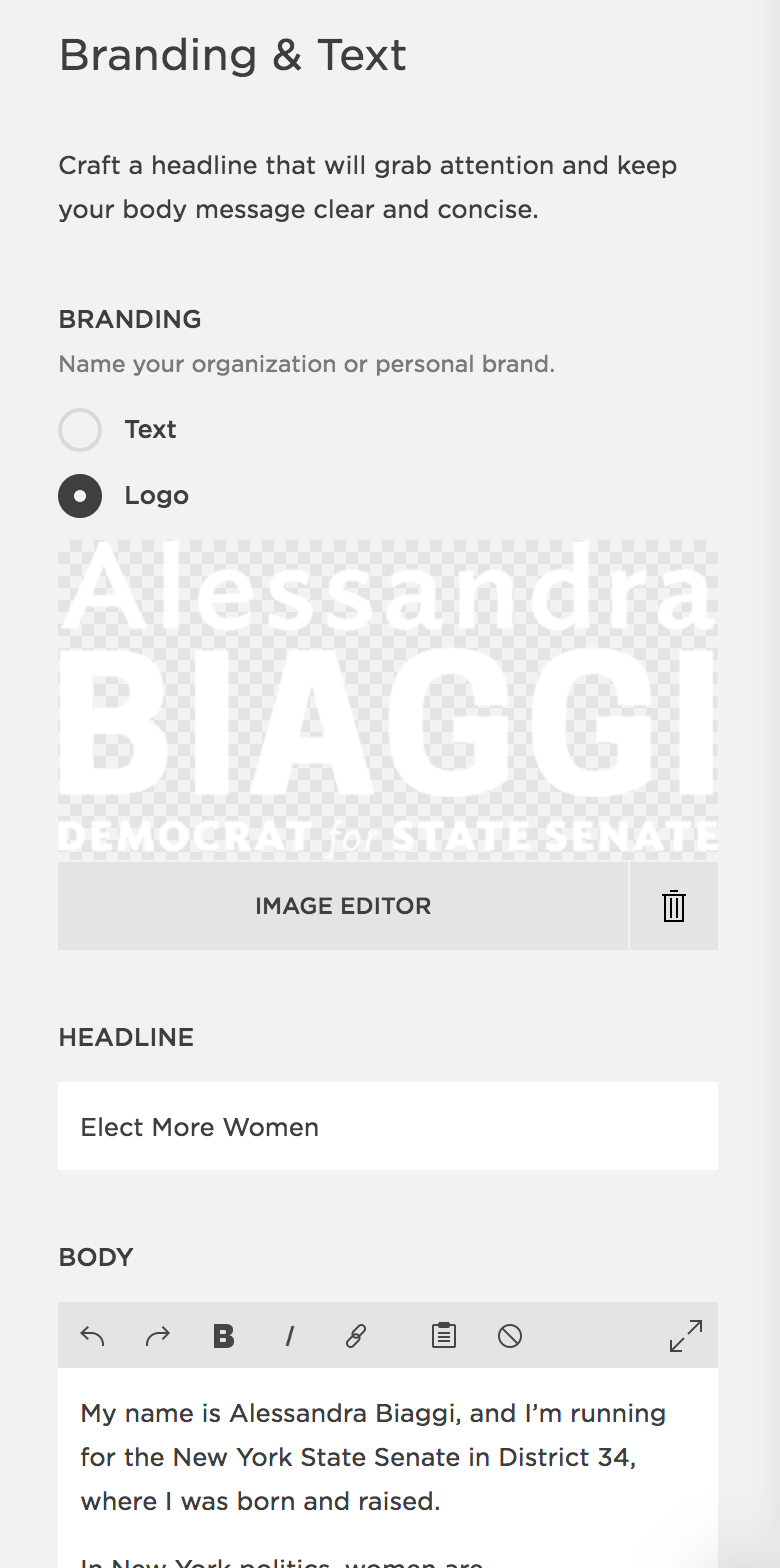 "Squarespace's ""Branding and Text"" panel, featuring a logo option, headline, and body text field."