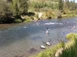 Warm River Fisherman