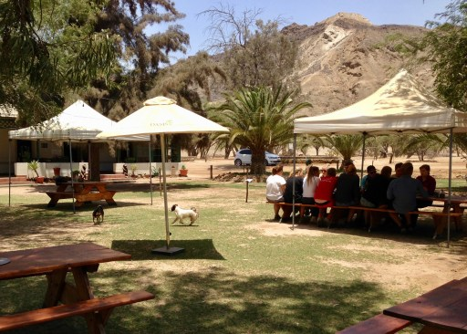 Outdoor seating for breakfast and lunch, with dogs and farm animals to entertain.