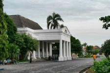 local house of representative