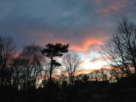 New England Happy Solstice - Brenda Davis Harsham
