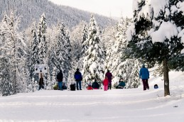 Manning Park at Christmas2-11