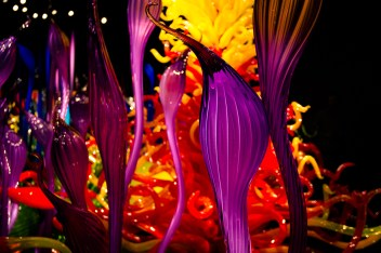 chihuly-9