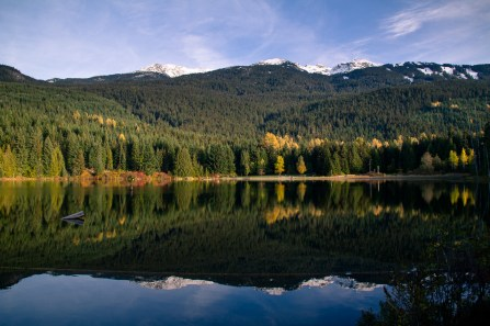 whistler-in-fall-18