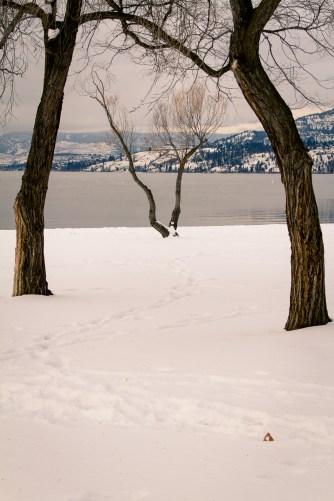 okanagen-lake-south-2