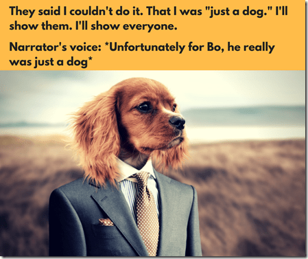 The Initiation meme 12, memes, dog in suit