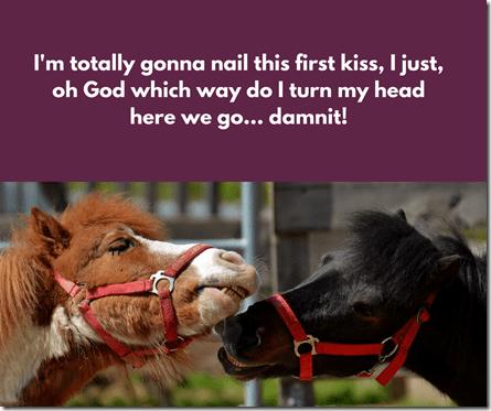 The Initiation meme 5, memes, horses