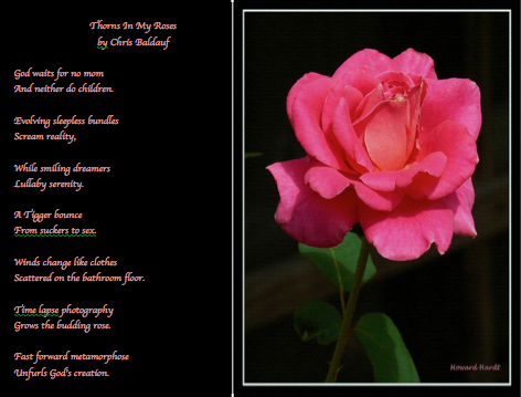 Chris Baldauf, Poem - Thorns In My Roses