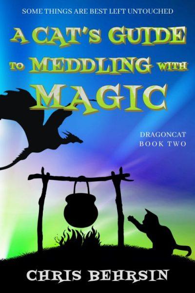 Meddling with Magic Ebook