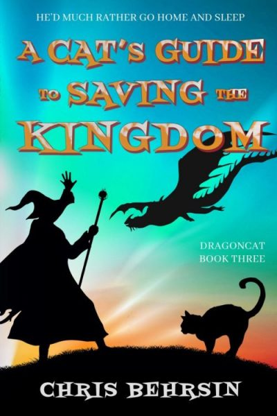Saving the Kingdom Ebook
