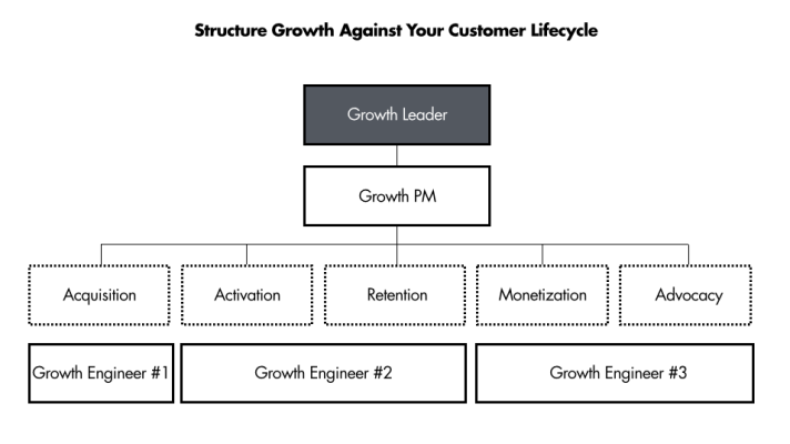 startup growth team org structure