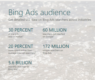Bing Ads audience snapshot