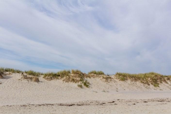 Dünen am Strand Sandhammaren