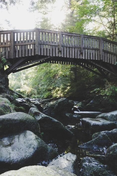 Brücke Verlobungsinsel im Okertal