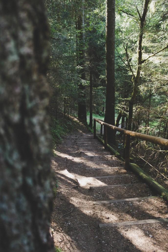 Treppe zum Grumbacher Teich