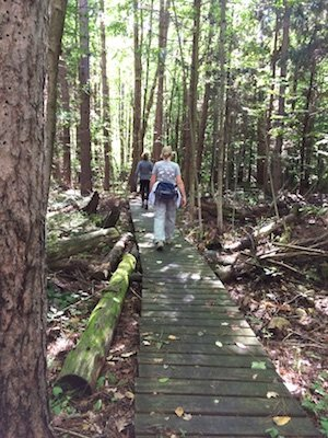 midstate-trail-leg3-5