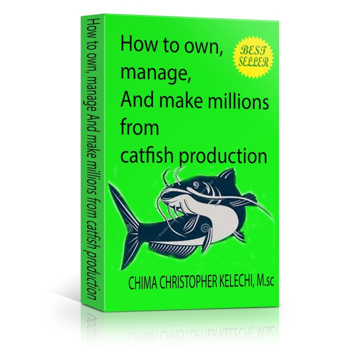 Facts about catfish production,management and marketing (ONLOOKER)