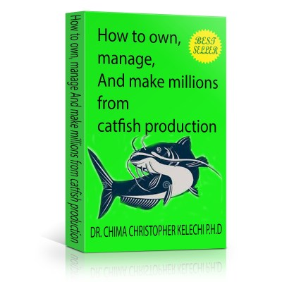 How To Own, Manage, And Make Millions From Catfish Farming Business BEST SELLER