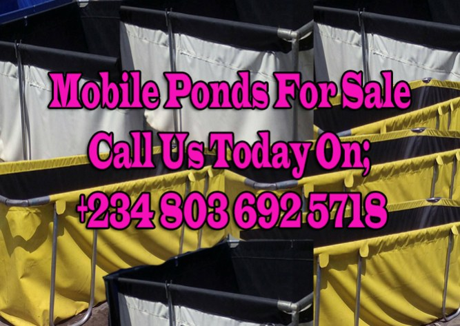 Collapsible Mobile Fish Pond For Sale In Nigeria (TARPAULIN MOBILE FISH POND)