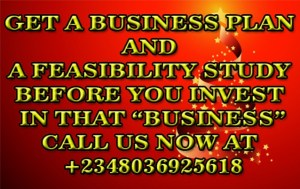 Feasibility Plus A Business Plan