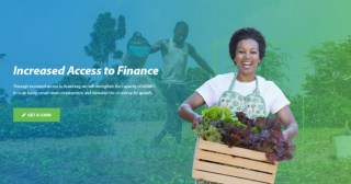 Business Startup Loans from Development Bank of Nigeria