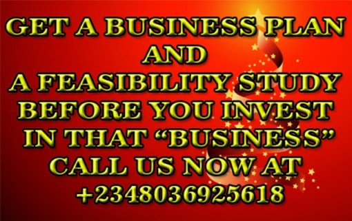 Writing Proposals Business Plans And Feasibility Study Report For Loan Or Grant