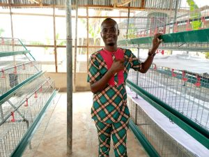Cheap Poultry Cages For Sale