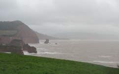 Near Ladram bay in Devon on a wet and windy New Year's day