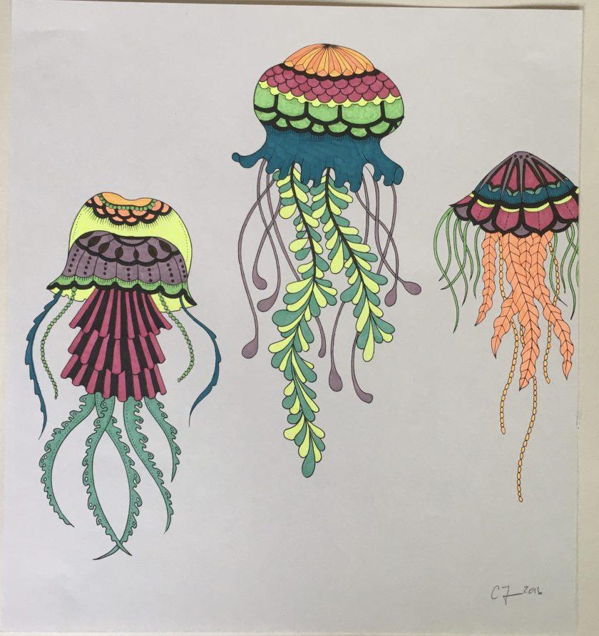 chris-freyer-coloring-17-jellyfish-2