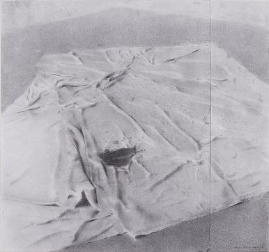 Drop Cloth, Woodstock Studio, 2010 Charcoal and graphite on paper, 17 x 18 in. $4200