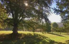 Landscape Painting Workshop-Newtown, PA, Slide 4