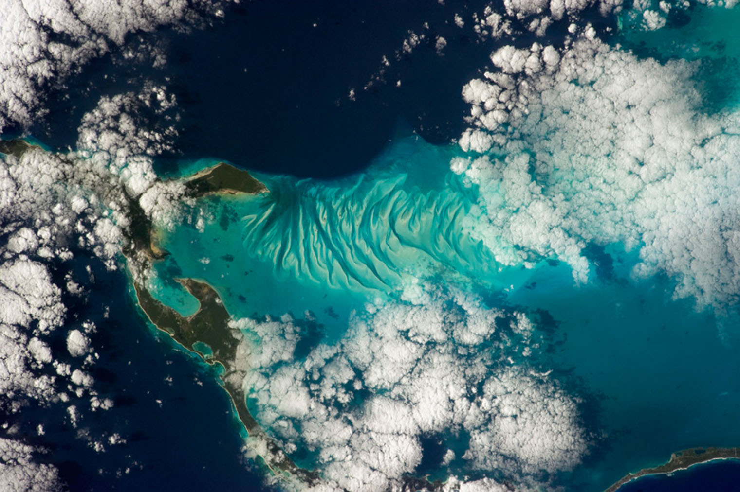 Bahamas Beauty