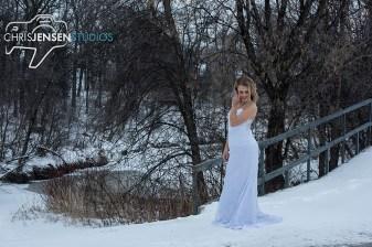 Anna_Lang_Bridal_Models_Chris_Jensen_Studios_Winnipeg_Wedding_Photography (106)
