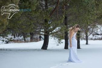 Anna_Lang_Bridal_Models_Chris_Jensen_Studios_Winnipeg_Wedding_Photography (56)