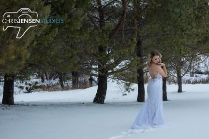Anna_Lang_Bridal_Models_Chris_Jensen_Studios_Winnipeg_Wedding_Photography (61)