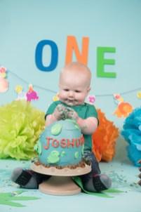Joshua Cake Smash 2018 (196)