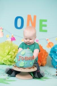 Joshua Cake Smash 2018 (197)