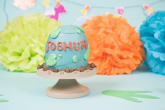 Joshua Cake Smash 2018 (31)