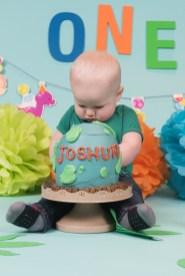 Joshua Cake Smash 2018 (66)