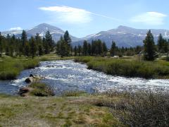 Yosemite in the Tioga Pass