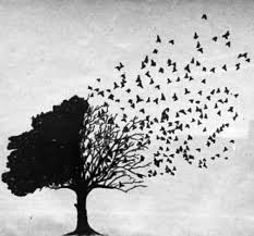 goodbyetreewithbirds