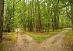 discernment-roads-copy