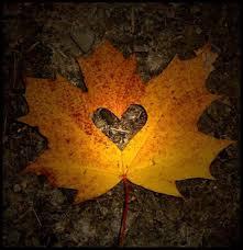 Enlarging Our Hearts